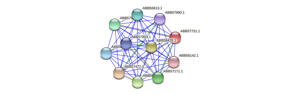 ABB57731.1 protein (Synechococcus elongatus PCC7942) - STRING interaction network