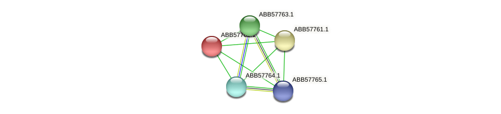 ABB57762.1 protein (Synechococcus elongatus PCC7942) - STRING interaction network