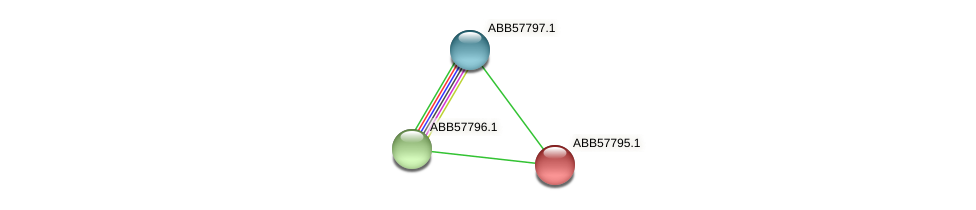 ABB57795.1 protein (Synechococcus elongatus PCC7942) - STRING interaction network