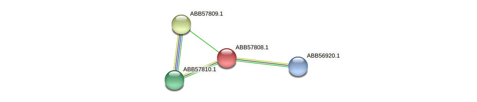 ABB57808.1 protein (Synechococcus elongatus PCC7942) - STRING interaction network