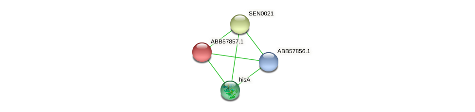 ABB57857.1 protein (Synechococcus elongatus PCC7942) - STRING interaction network