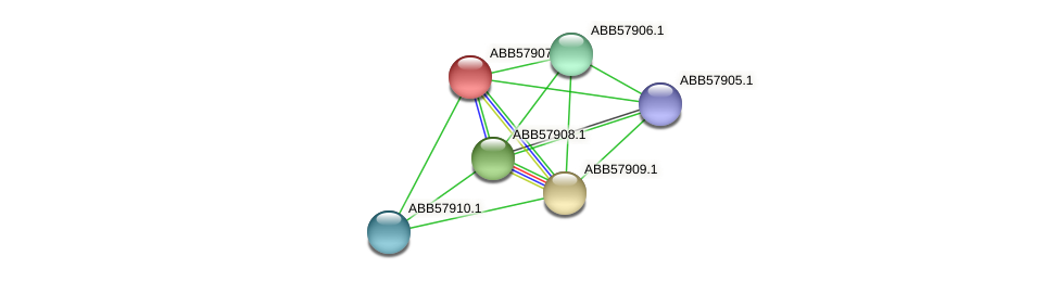 ABB57907.1 protein (Synechococcus elongatus PCC7942) - STRING interaction network