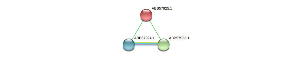 ABB57925.1 protein (Synechococcus elongatus PCC7942) - STRING interaction network