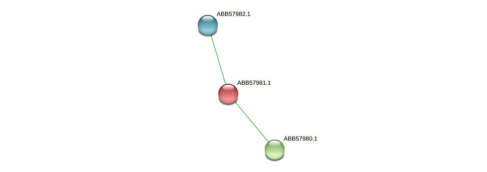 ABB57981.1 protein (Synechococcus elongatus PCC7942) - STRING interaction network