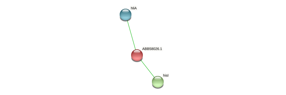 ABB58026.1 protein (Synechococcus elongatus PCC7942) - STRING interaction network