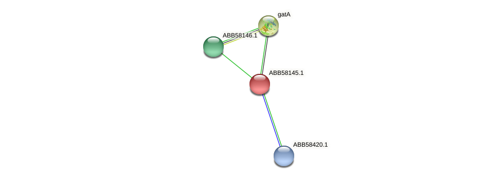 ABB58145.1 protein (Synechococcus elongatus PCC7942) - STRING interaction network