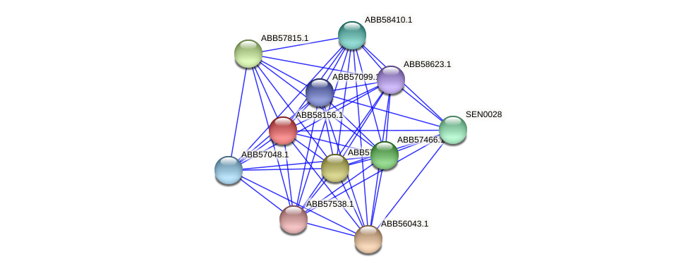 ABB58156.1 protein (Synechococcus elongatus PCC7942) - STRING interaction network