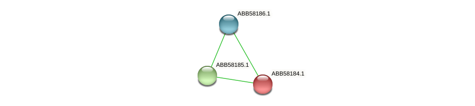 ABB58184.1 protein (Synechococcus elongatus PCC7942) - STRING interaction network