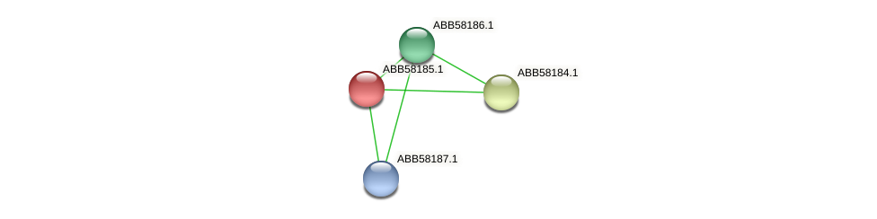 ABB58185.1 protein (Synechococcus elongatus PCC7942) - STRING interaction network