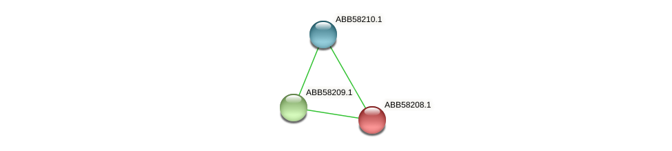 ABB58208.1 protein (Synechococcus elongatus PCC7942) - STRING interaction network