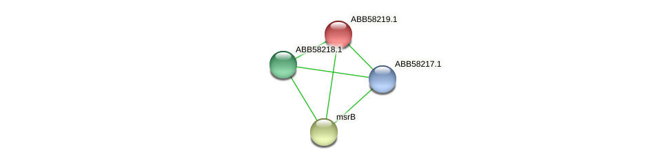 ABB58219.1 protein (Synechococcus elongatus PCC7942) - STRING interaction network