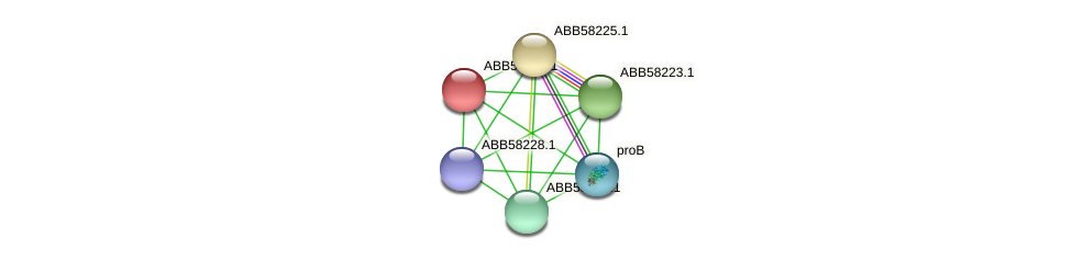 ABB58224.1 protein (Synechococcus elongatus PCC7942) - STRING interaction network