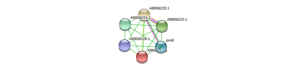 ABB58226.1 protein (Synechococcus elongatus PCC7942) - STRING interaction network