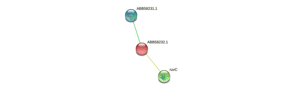 ABB58232.1 protein (Synechococcus elongatus PCC7942) - STRING interaction network
