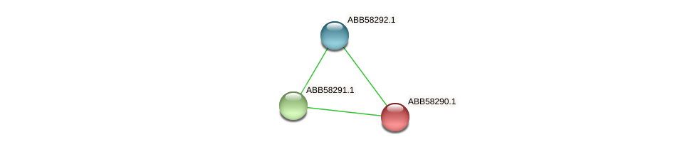 ABB58290.1 protein (Synechococcus elongatus PCC7942) - STRING interaction network