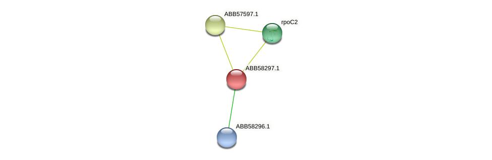 ABB58297.1 protein (Synechococcus elongatus PCC7942) - STRING interaction network