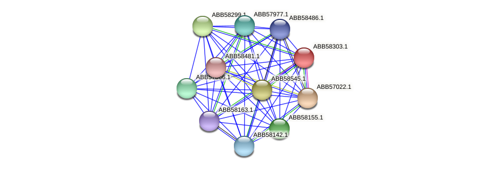 ABB58303.1 protein (Synechococcus elongatus PCC7942) - STRING interaction network