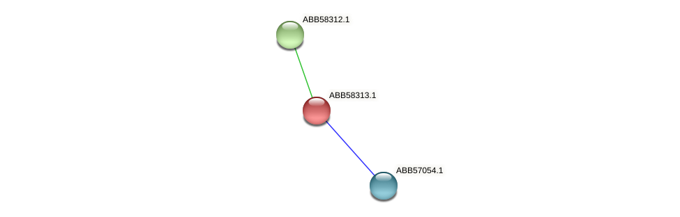 ABB58313.1 protein (Synechococcus elongatus PCC7942) - STRING interaction network
