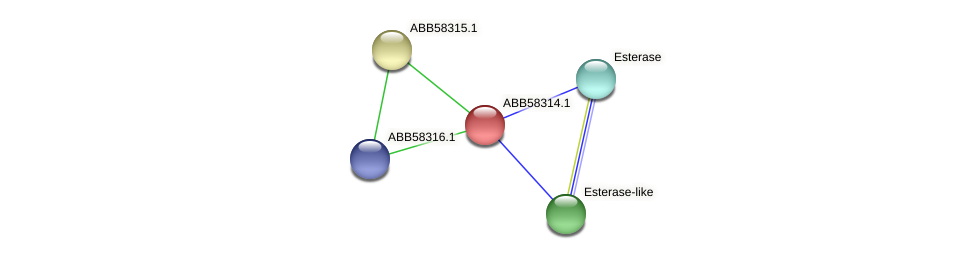 ABB58314.1 protein (Synechococcus elongatus PCC7942) - STRING interaction network