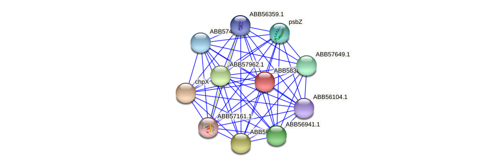 ABB58385.1 protein (Synechococcus elongatus PCC7942) - STRING interaction network