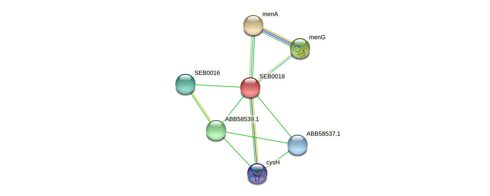 SEB0018 protein (Synechococcus elongatus PCC7942) - STRING interaction network