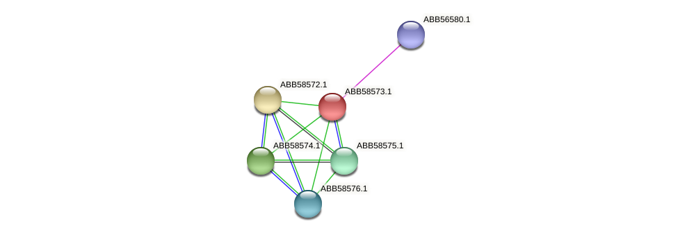 ABB58573.1 protein (Synechococcus elongatus PCC7942) - STRING interaction network