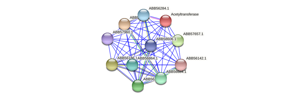 ABB58590.1 protein (Synechococcus elongatus PCC7942) - STRING interaction network