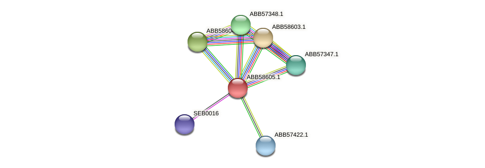 ABB58605.1 protein (Synechococcus elongatus PCC7942) - STRING interaction network