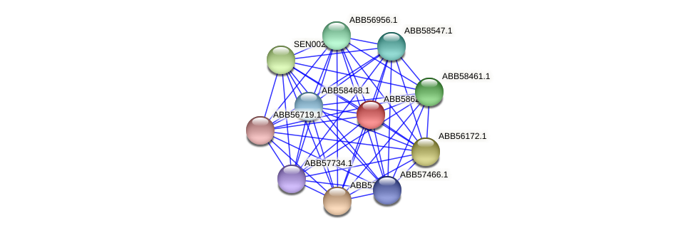 ABB58623.1 protein (Synechococcus elongatus PCC7942) - STRING interaction network