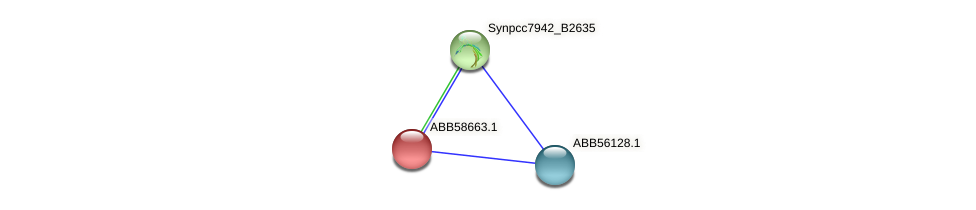 ABB58663.1 protein (Synechococcus elongatus PCC7942) - STRING interaction network