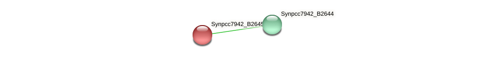 anL21 protein (Synechococcus elongatus PCC7942) - STRING interaction network