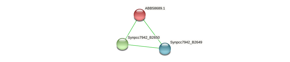 ABB58689.1 protein (Synechococcus elongatus PCC7942) - STRING interaction network