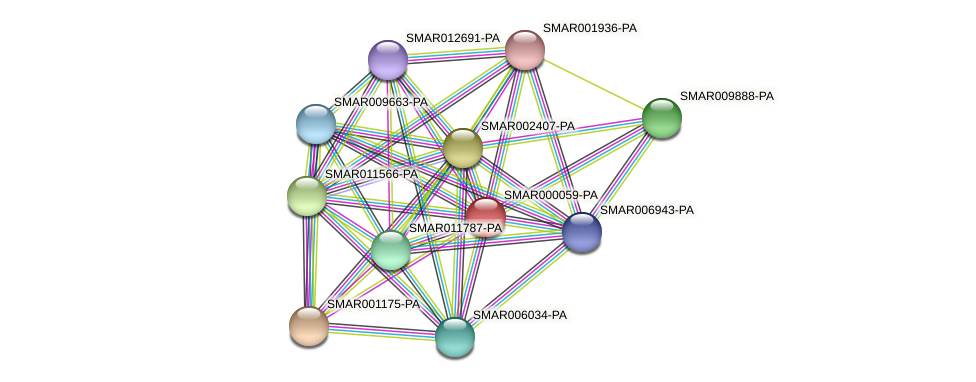 SMAR000059-PA protein (Strigamia maritima) - STRING interaction network