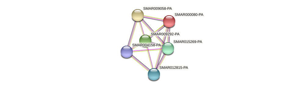 SMAR000080-PA protein (Strigamia maritima) - STRING interaction network