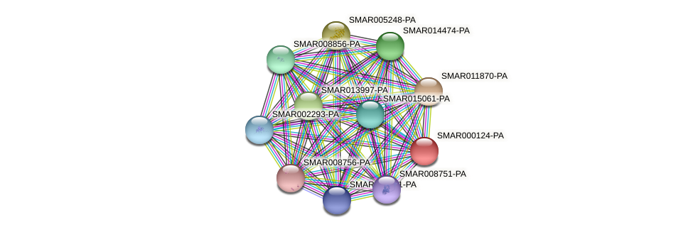 SMAR000124-PA protein (Strigamia maritima) - STRING interaction network