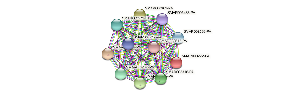 SMAR000222-PA protein (Strigamia maritima) - STRING interaction network