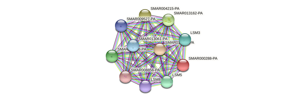 SMAR000288-PA protein (Strigamia maritima) - STRING interaction network