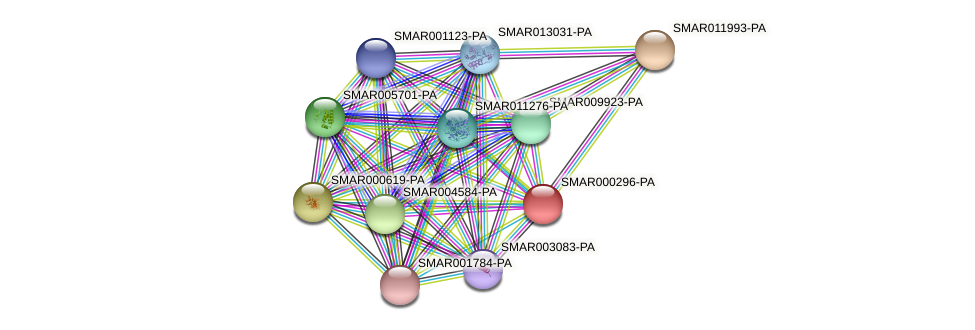 SMAR000296-PA protein (Strigamia maritima) - STRING interaction network