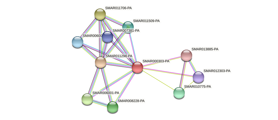 SMAR000303-PA protein (Strigamia maritima) - STRING interaction network