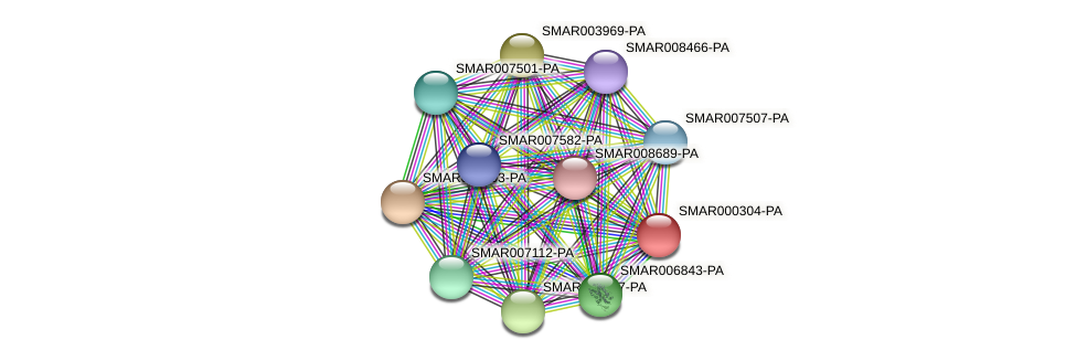SMAR000304-PA protein (Strigamia maritima) - STRING interaction network