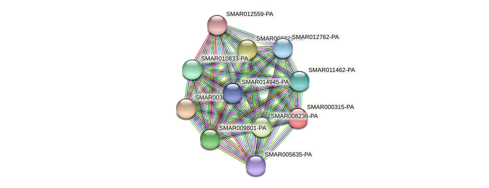 SMAR000315-PA protein (Strigamia maritima) - STRING interaction network