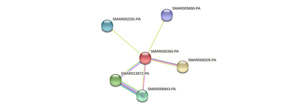 SMAR000350-PA protein (Strigamia maritima) - STRING interaction network