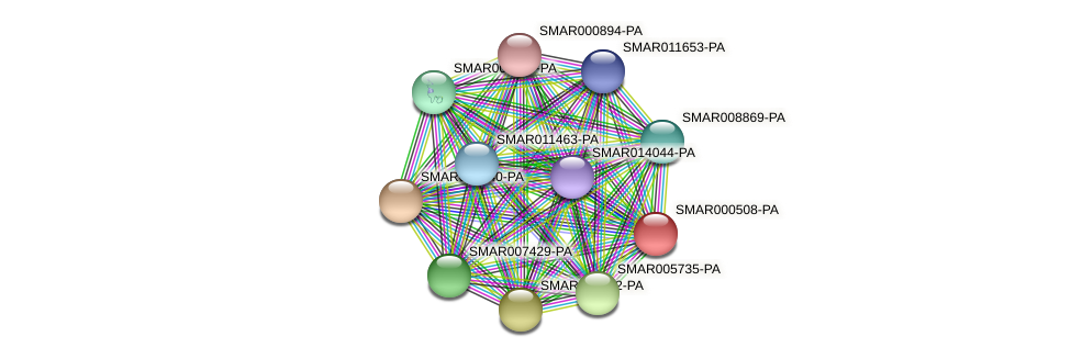 SMAR000508-PA protein (Strigamia maritima) - STRING interaction network