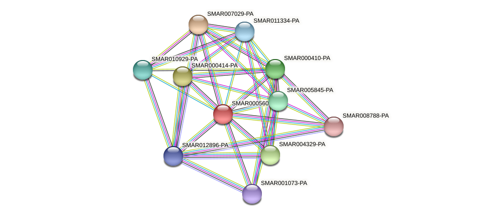 SMAR000560-PA protein (Strigamia maritima) - STRING interaction network