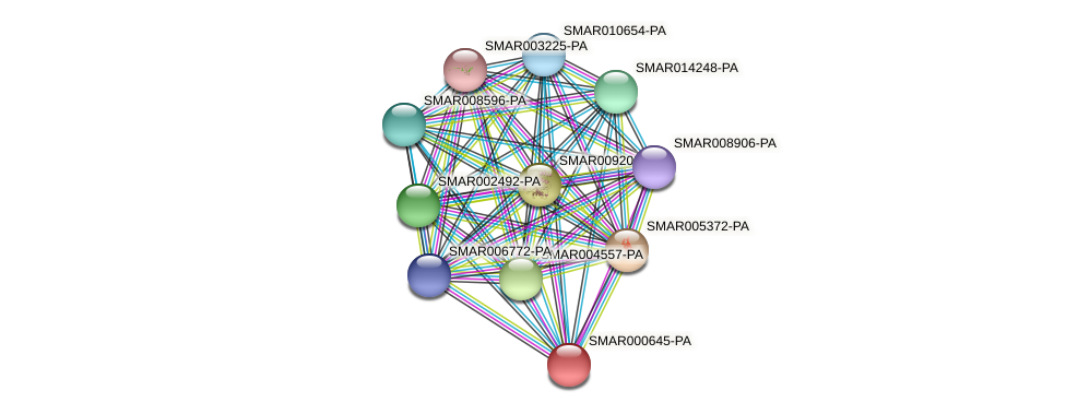 SMAR000645-PA protein (Strigamia maritima) - STRING interaction network