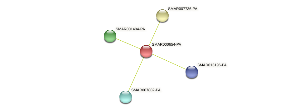 SMAR000654-PA protein (Strigamia maritima) - STRING interaction network