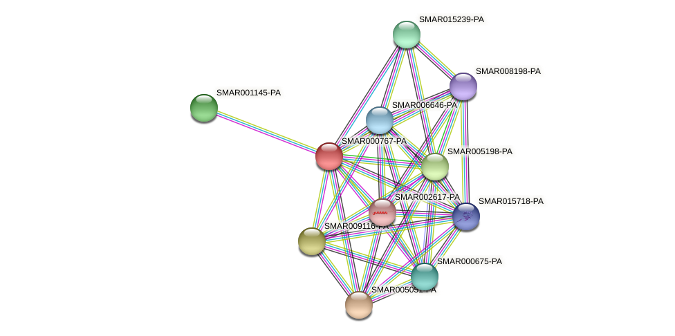 SMAR000767-PA protein (Strigamia maritima) - STRING interaction network
