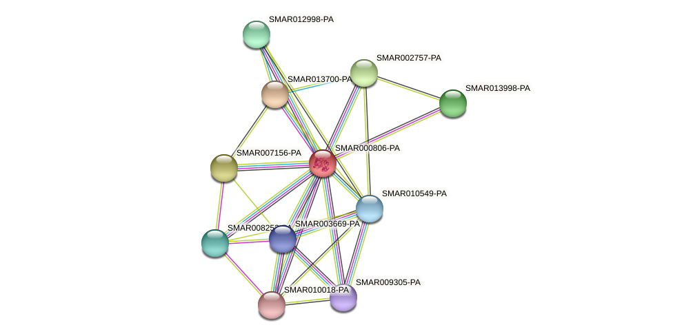 SMAR000806-PA protein (Strigamia maritima) - STRING interaction network