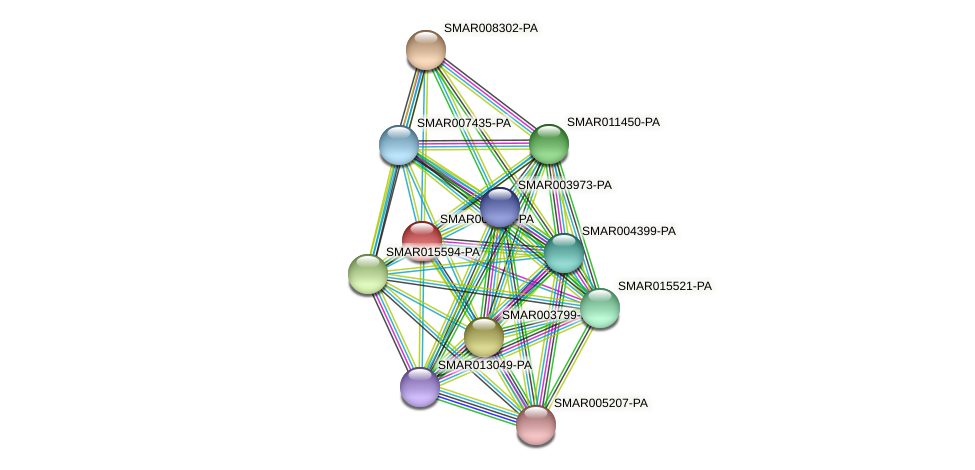 SMAR000833-PA protein (Strigamia maritima) - STRING interaction network