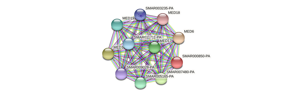 SMAR000850-PA protein (Strigamia maritima) - STRING interaction network